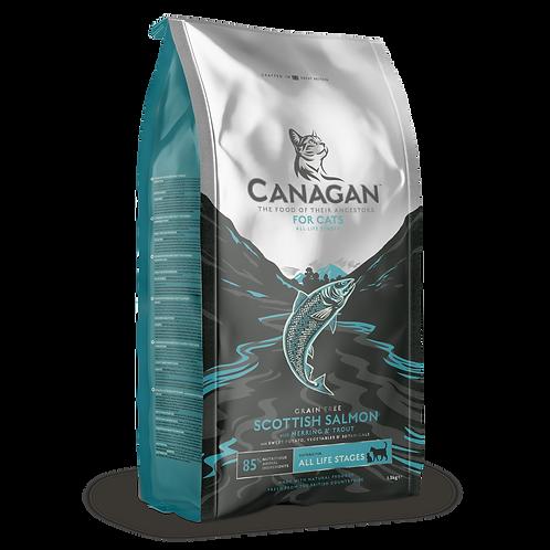 Canagan Cat Dry Scottish Salmon 375g