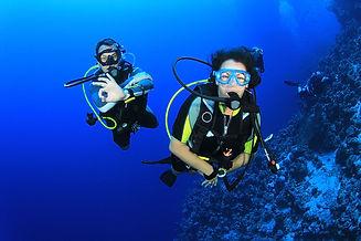 PADI Open Water Diver Savusavu Fiji