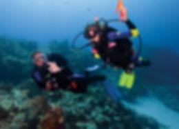 PADI Discover Scuba Diving Savusavu.jpg