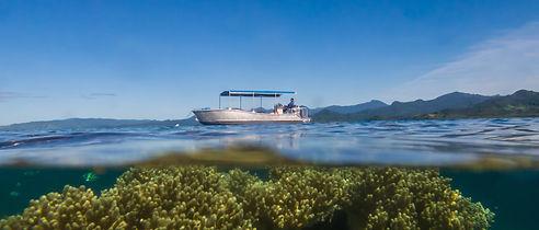 Diving Snorkelling Natewa Bay Fiji.jpg