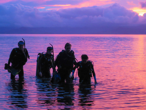 Conservation & Education in Natewa Bay, near Savusavu, Fiji