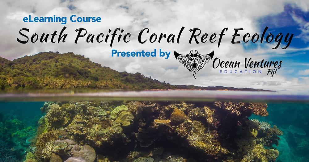 PADI South Pacific Coral Reef Ecology Ocean Ventures Fiji