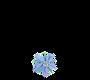 Herbarylogo_Borage.png
