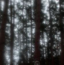Deseo de bosque III - Amaia Molinet