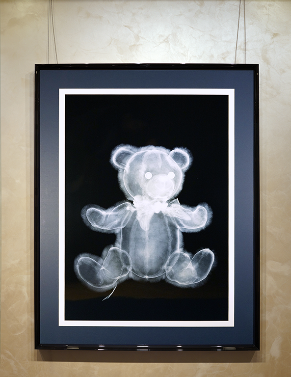 Мишка | Nick Veasey | Teddy bear | art.vin