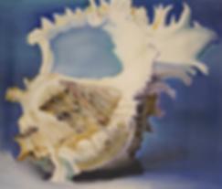 ракушка морская | seashell | Михаил Балавадзе | Mihail Balavadze | грузинский худодник | купить картину в Москве | Артмагия | Artmagic | art.vin