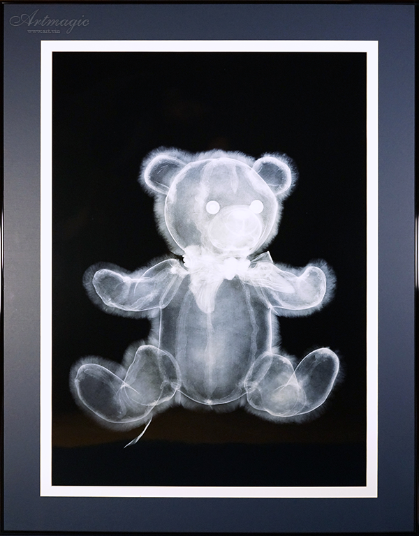 Nick Veasey | Fluffy Teddy Bear | art.vin