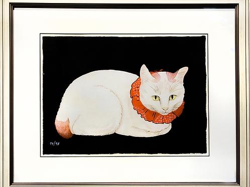 """""""WHITE CAT"""""""