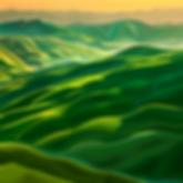 Тоскана   Toscana   Василий Сидорин   VASILY SIDORIN   картина маслом   в багете   sidorin.info   Artmagic   art.vin