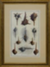 Морское гады | Обитатели глубин | XVIII век | Marine reptiles | Denizens of the deep | литография | art.vin | Artmagic | Артмагия