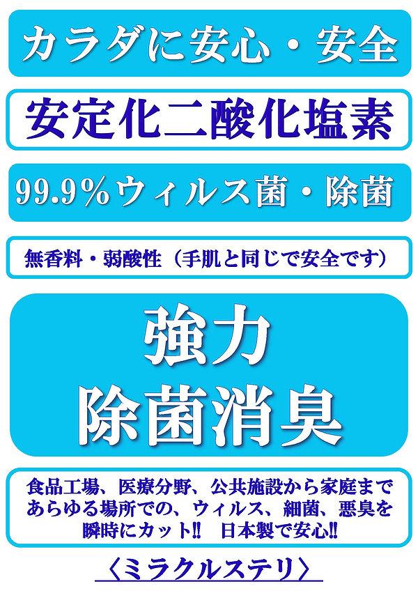 ミラクルステリ チラシ 松原氏2_ページ_1.jpg