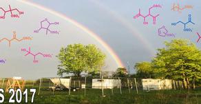Hughes et al. on secondary organic aerosol chemistry during LMOS 2017 online at Atmospheric Environ