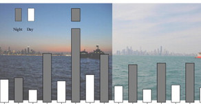 Cyclic Siloxanes in Air, Including Identification of High Levels in Chicago and Distinct...