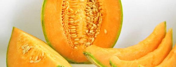 Melón Cantaloup Perlita