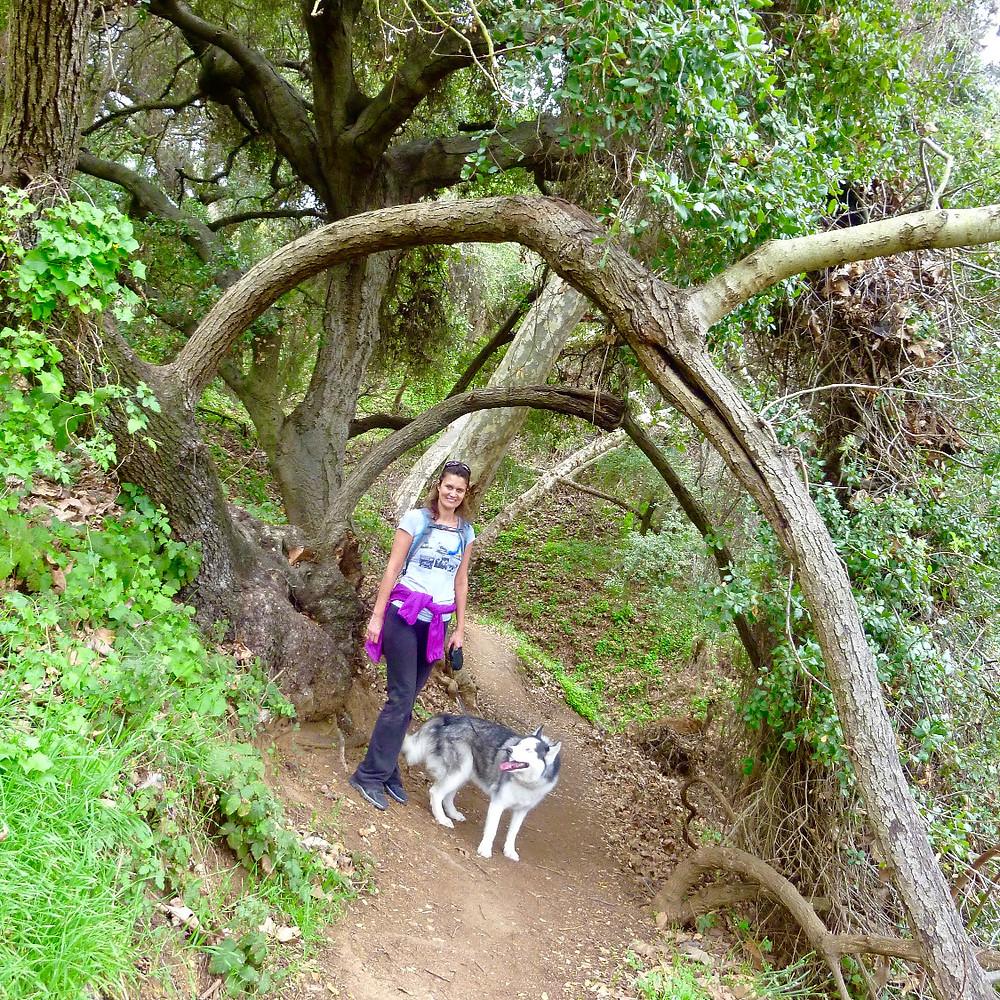 Franklin Canyon Trail
