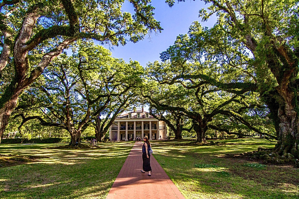 Plantation new orleans