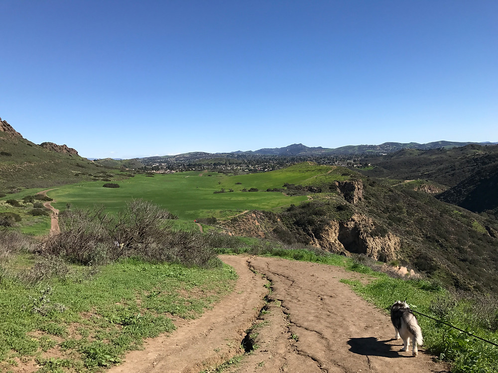 Wildwood Park Trails