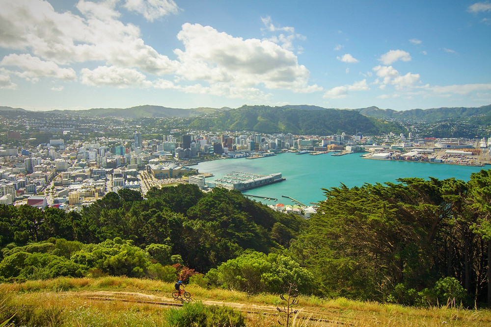 Wellington New Zealand view