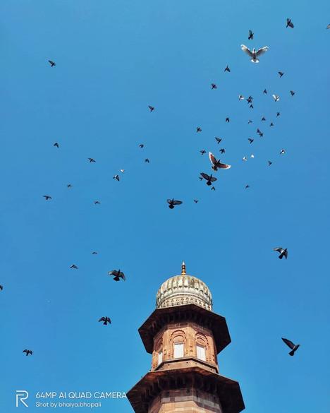 Photo by - Apoorv Shrivastava