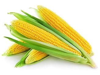 Гумат для кукурузы