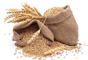Гумат для пшеницы и ячменя