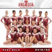 Xcel Gold