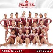 Xcel Silver
