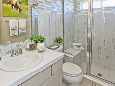Staged Model Home - Bathroom 2