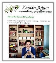 Zeytin_Agac_Blog_Mayıs_2008.jpg