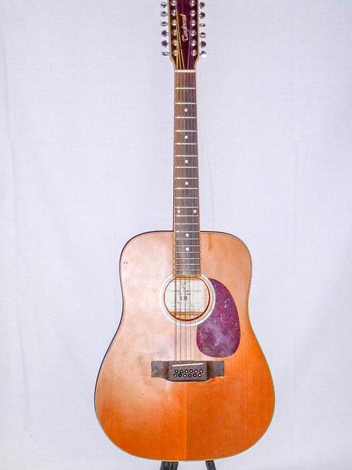 Tanglewood 12 String