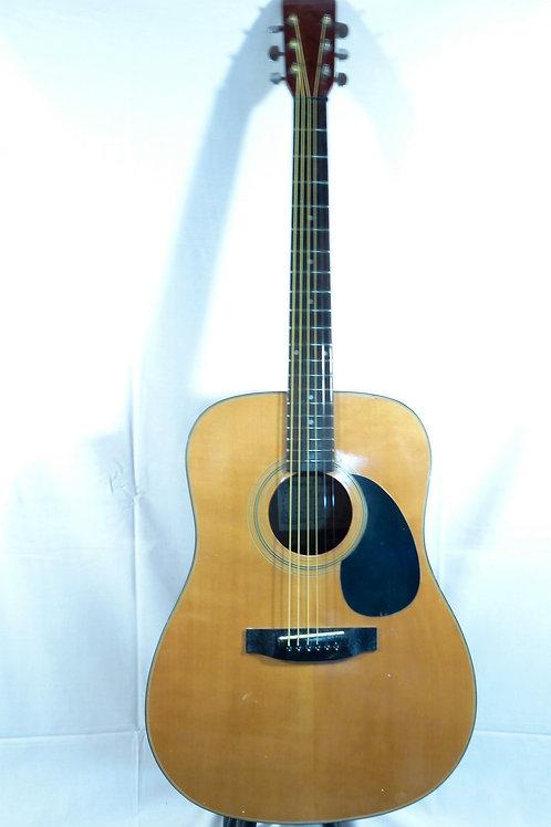 Magnum Dreadnought Guitar