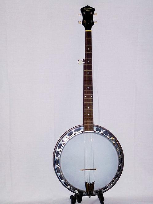 Recording King 5 String banjo
