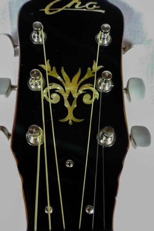 6 string Professional Banjo