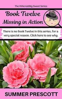 Missing INNcredibly Sweet book 12
