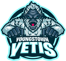 Youngstown Yetis.png