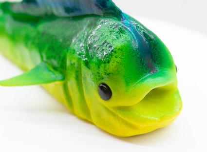 Fondant Mahi Fish Tutorial