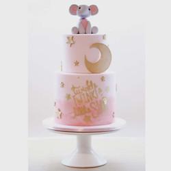 Twinkle little star cake