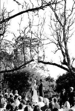 colorado weddings in fall