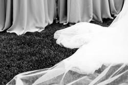 wedding dress photo denver