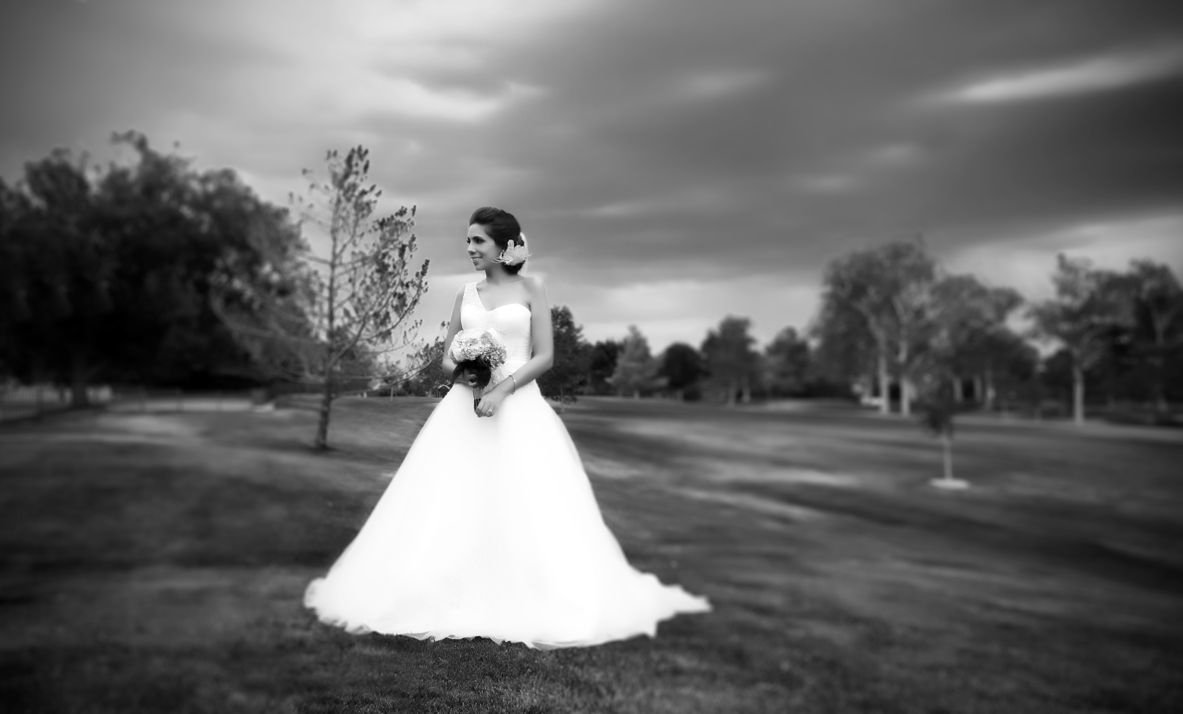 bride in grass black white