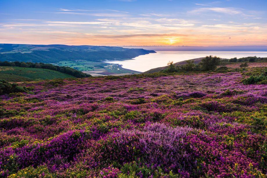 Beautiful Exmoor