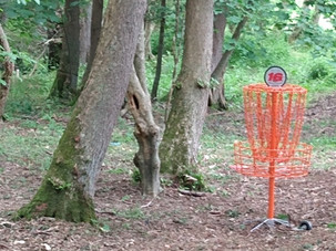 Disc Golf Net.jpg