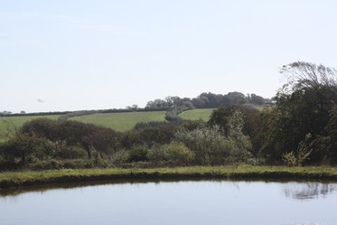 The Lake at South Worden Farm