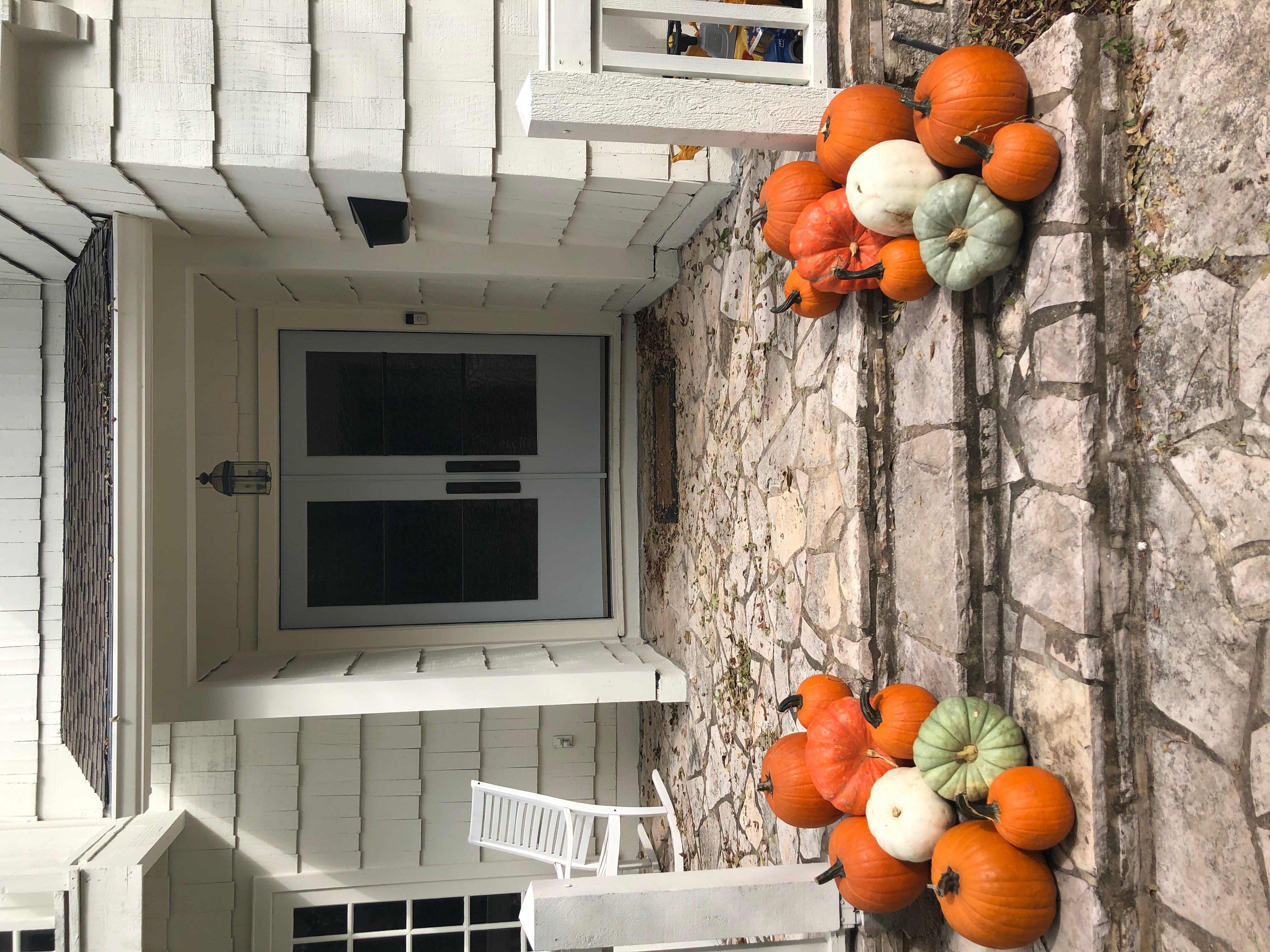 Pumpkin Delivery Alamo Heights 3