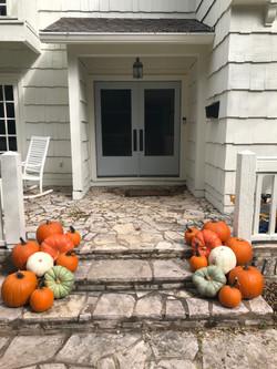 Pumpkin Delivery Alamo Heights 3