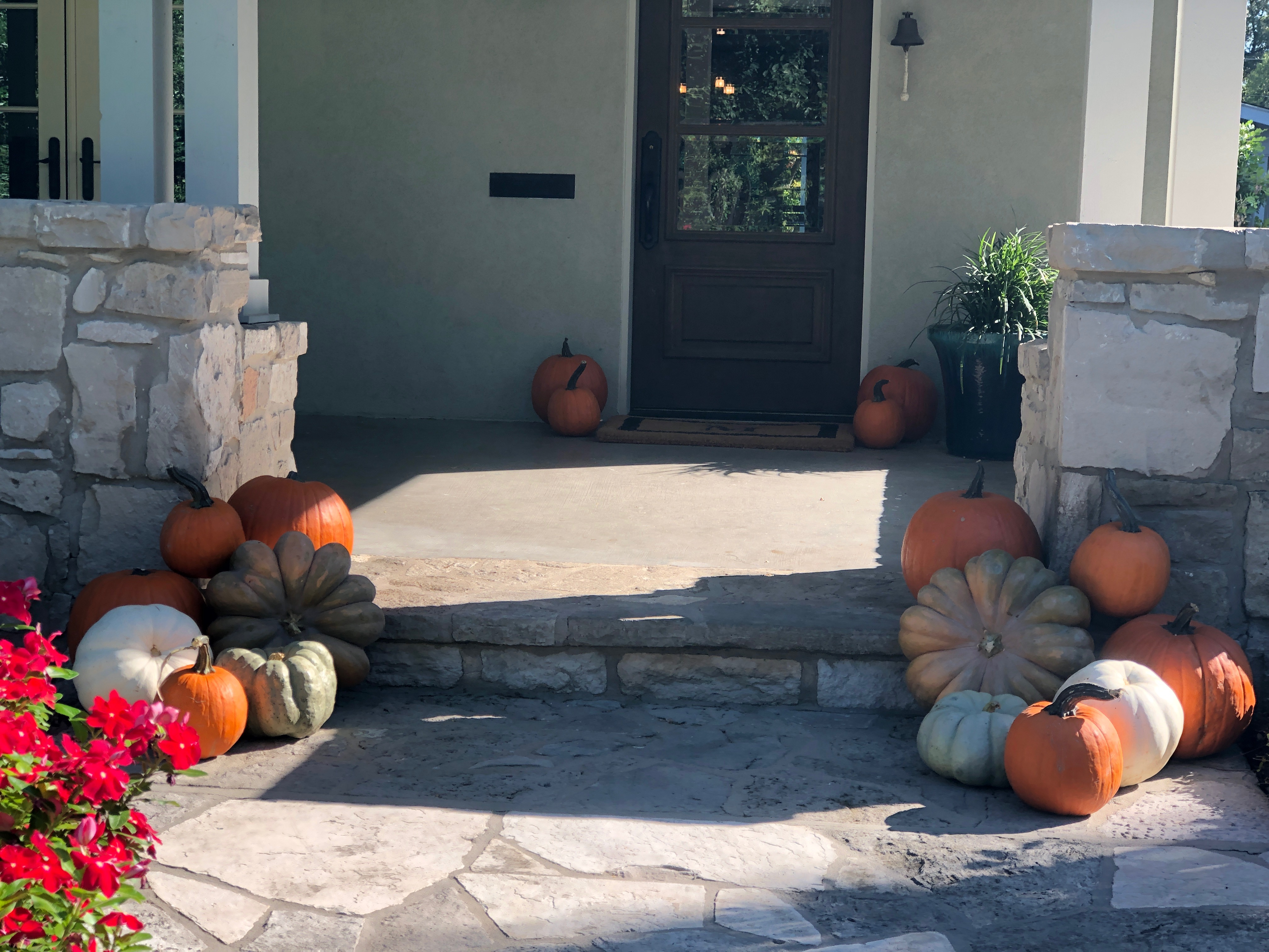 Pumpkin Delivery Alamo Heights 2