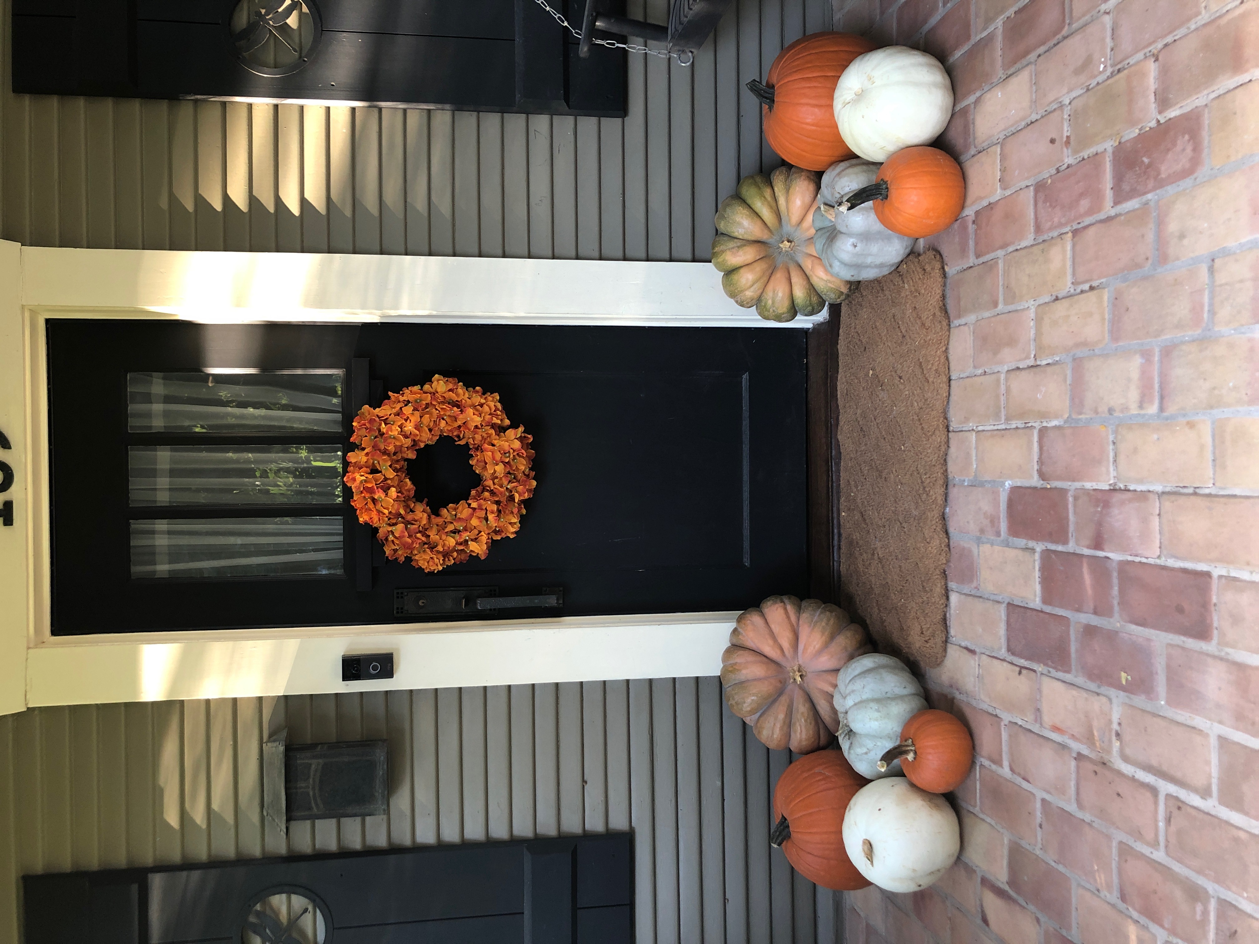Pumpkin Delivery Alamo Heights 8