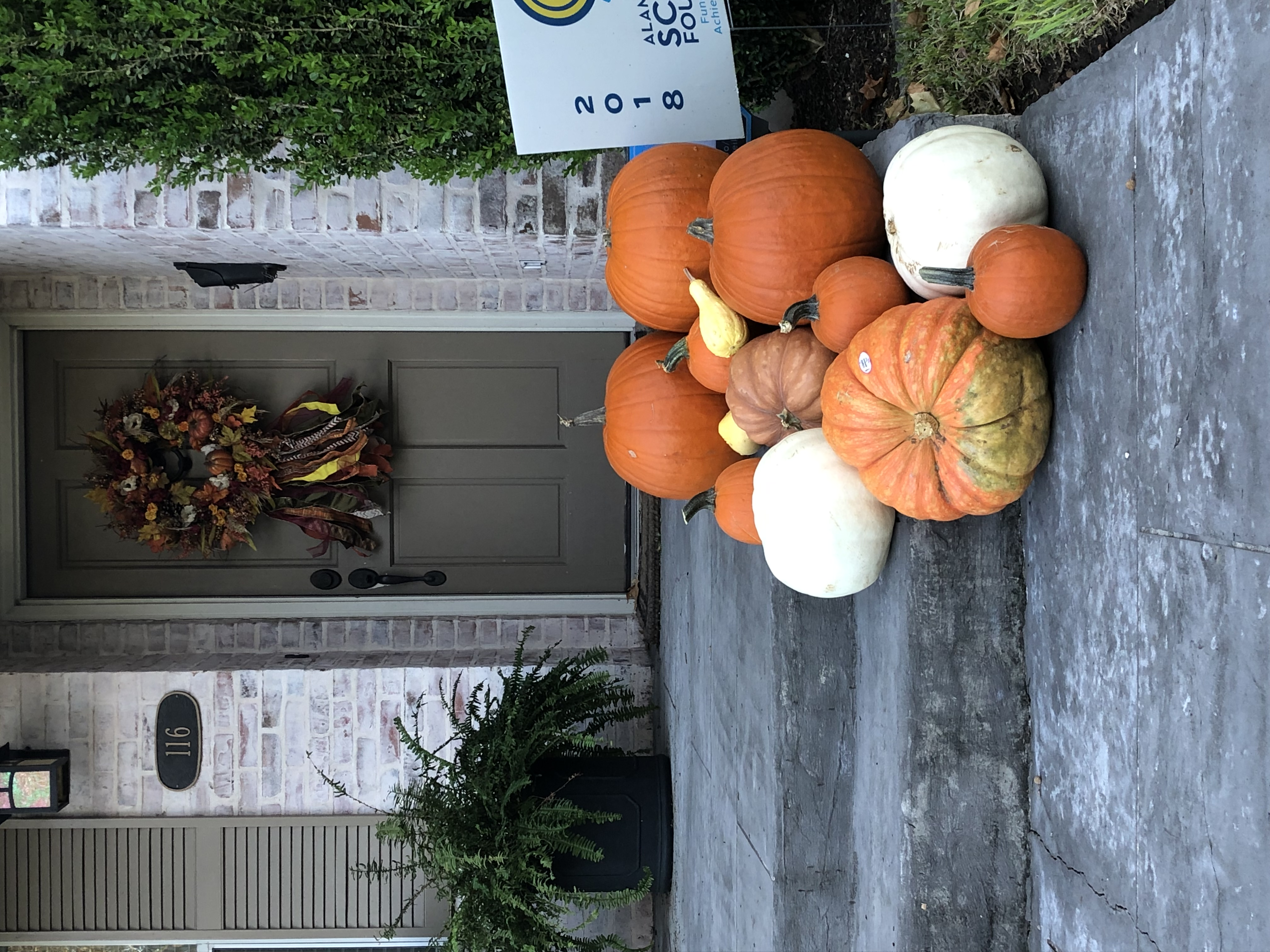Pumpkin Delivery Alamo Heights 7