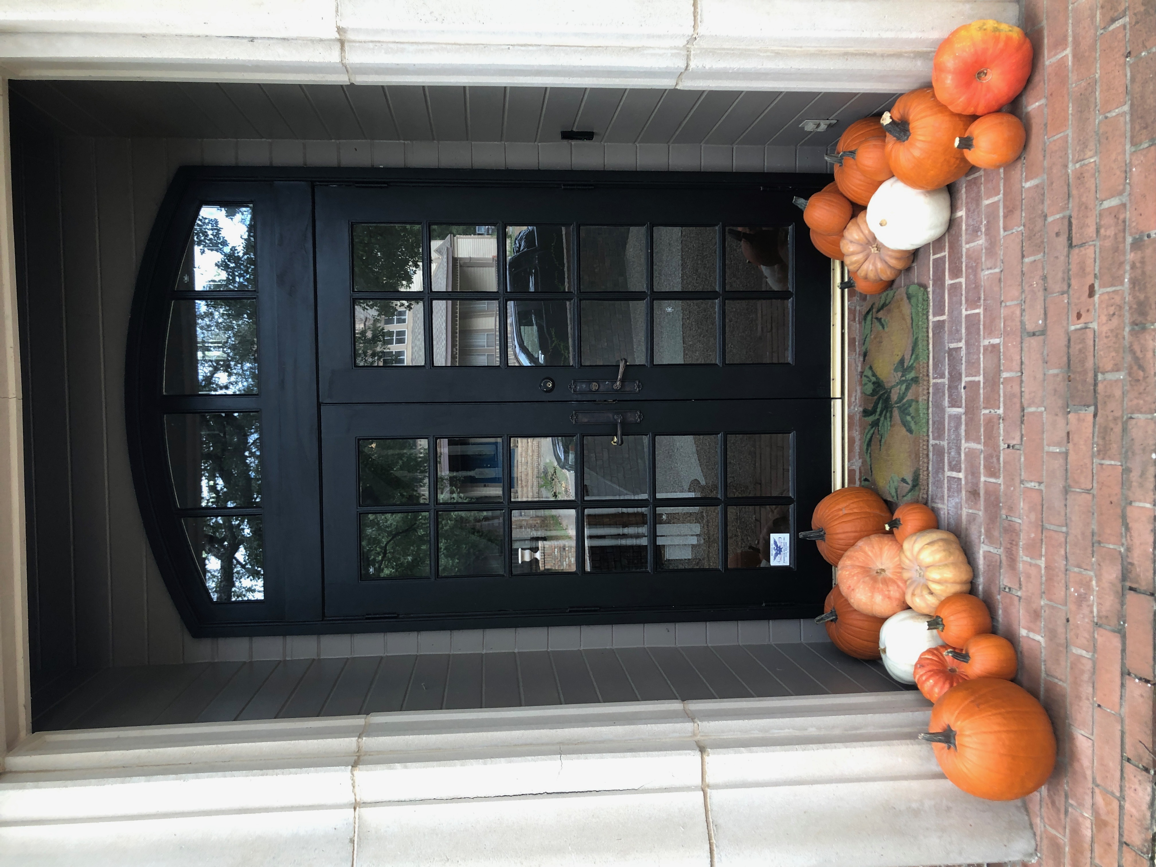 Pumpkin Delivery Alamo Heights 5