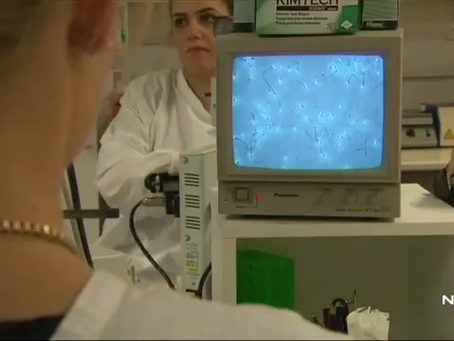 new IVF Artificial Intelligence technology developed in Australia will increase success rates